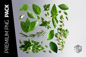 22 ITALIAN HERBS PNG IMAGES