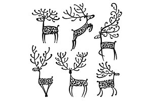 Ornate deer, sketch for your design