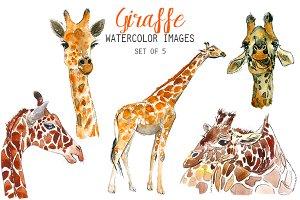 Watercolor Giraffe Clipart
