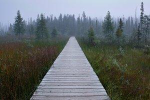Infinite path
