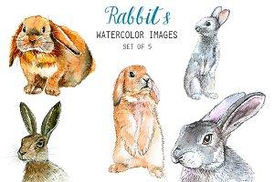 Watercolor Rabbits Clipart