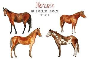 Watercolor Horses Clipart