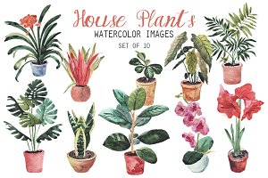 Watercolor House Plants Clipart