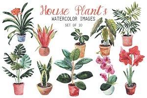 Watercolor House Plants Clipart