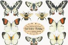 The Butterfly Meadow
