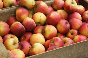 Fresh apples in wooden boxes