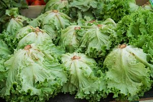 Fresh lettuce heads on sale at the m