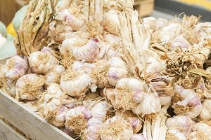 Garlic in wooden boxes at the market