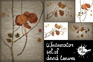 Watercolor dead leaves set