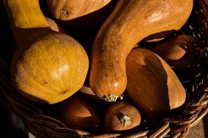 A basket of pumpkins