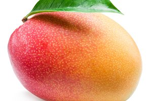Mango fruit with leaf isolated on th