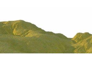 Green grass hills lit by warm