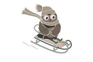 Funny and cute sledging owl. New