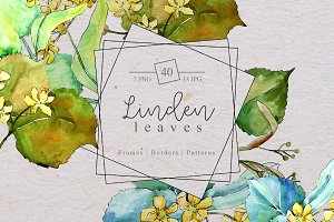 Watercolor linden leaves PNG set
