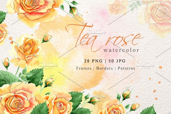 Watercolor Tea Yellow Rose Png Set Illustrations Creative Market
