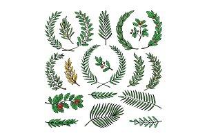 Wreath vector tree branch herald