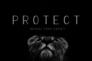 PROTECT Sans Serif Font Family