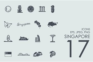 17 Singapore icons