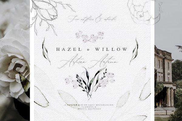 Hazel - Artisan Flowers & Watercolo…