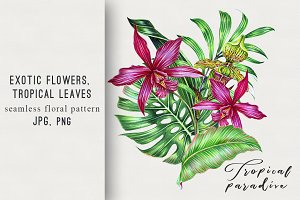 Tropical flowers exotic illustration