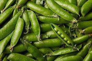 full frame shot of ripe pea pods for