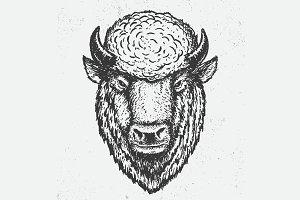 the buffalo head
