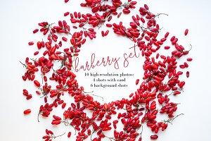 barberry set