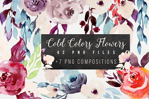 Cold Colors Flowers