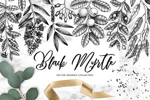 Black Myrtle Design Collection