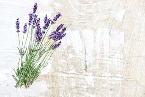 Lavender flowers rustic wooden textu