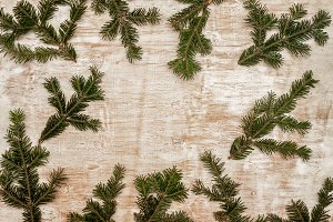 Background with fir branches on a li