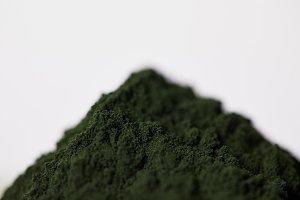 selective focus of spirulina algae p