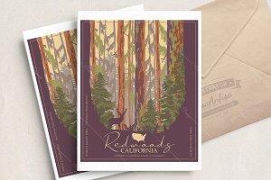 Redwoods Californinan park