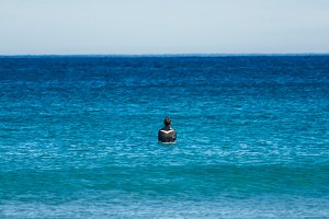 Surfer waiting for a wave in the sea