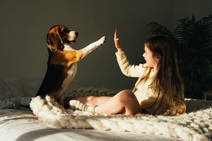 Charming young girl and beagle