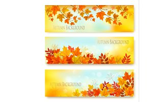 Three Autumn Nature Banners. Vector