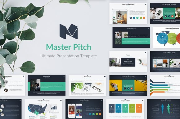 Master Pitch Powerpoint Template Presentation Templates