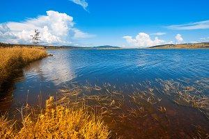 Gold Beaver Brook
