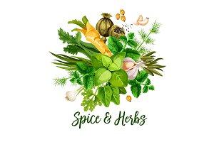 Vector spice, herbs and seasonings