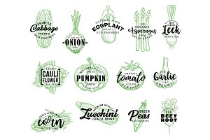 Organic vegetables harvest lettering