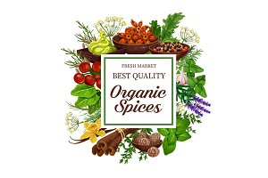 Organic herb and spice seasonings