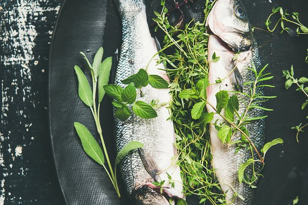 Food Stock Photos - Flat-lay of raw uncooked sea bass