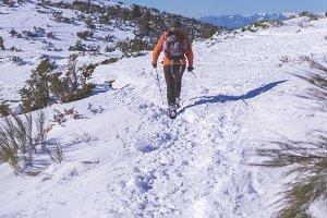 Rear view of male hiker walking on a