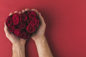 cropped shot of man holding roses in