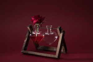 red rose in heart shaped vase and em