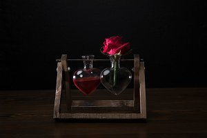 red rose in heart shaped vase and va