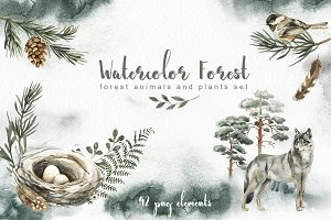 Watercolor forest Animals and Plants