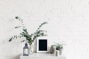 houseplants with blank small chalkbo