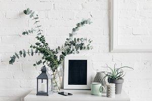 houseplants with blank chalkboard in