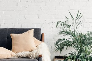 comfy couch with flowerpots in white